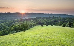 9 mile Hike, Vineyard tour, tasting and picnic